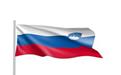 斯洛文尼亚签证案例分析